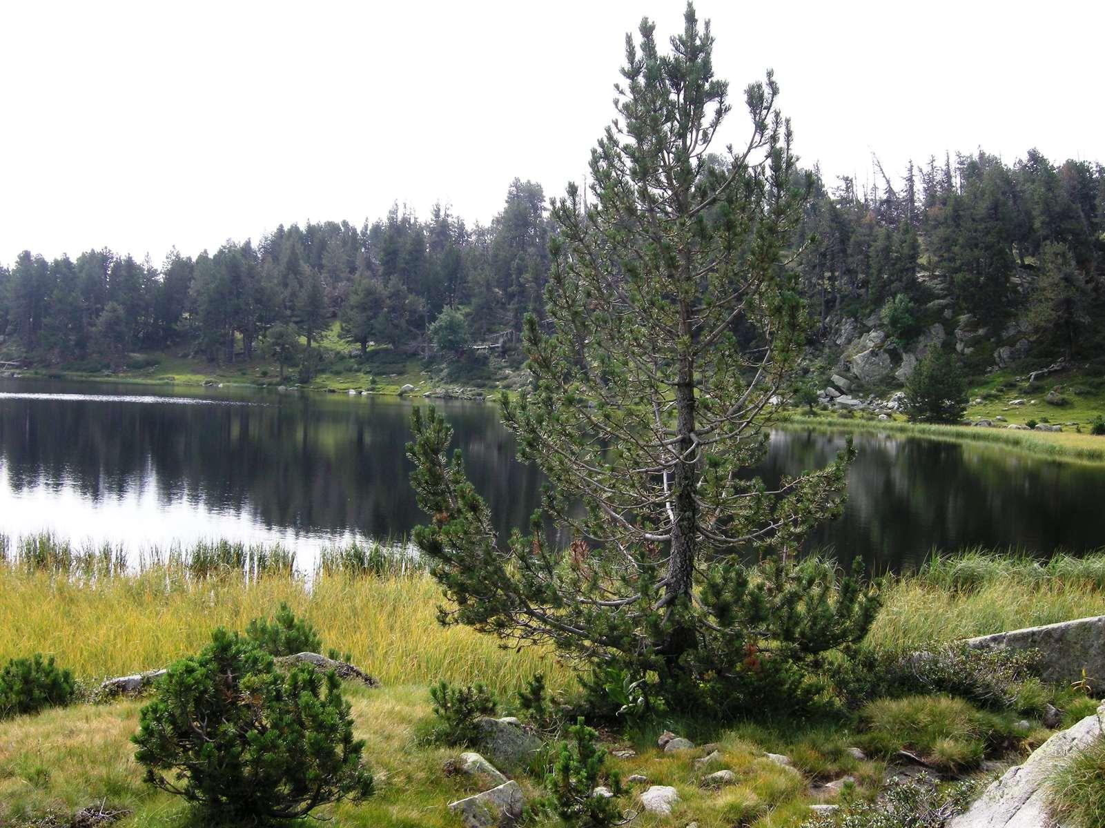 Lac d'Aude